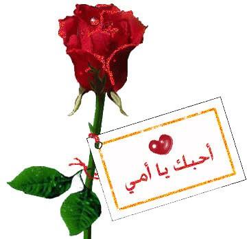 أجمل 10 رسائل شكر في عيد الأم Ellearabia
