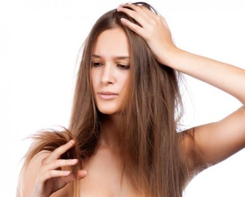 خلطات طبيعية لمحاربة تقصف الشعر