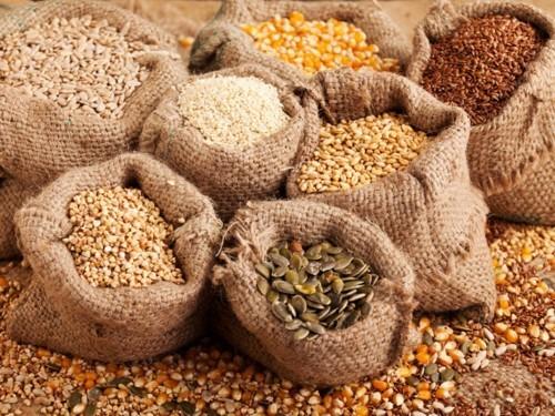 ما هي الفوائد الصحية للبذور؟
