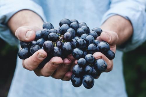أهم 6 فوائد صحية للعنب