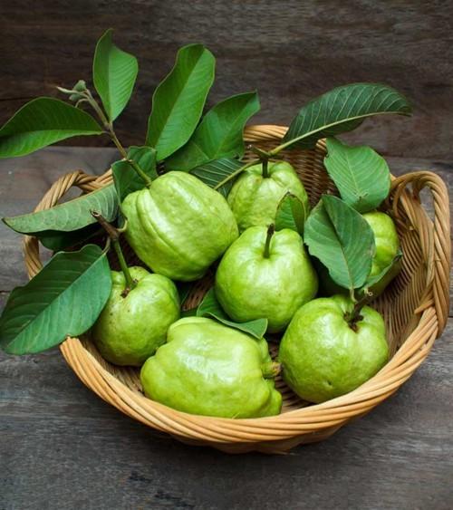 أوراق الجوافة ستخلّصكِ من تساقط الشعر