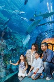 """""""دبي أكواريوم"""" يحصد لقب أفضل حوض أكواريوم في العالم"""