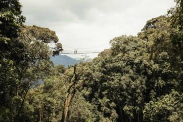 انغمس في المغامرات في منتجع ون آند أونلي نيونغوي هاوس في رواندا